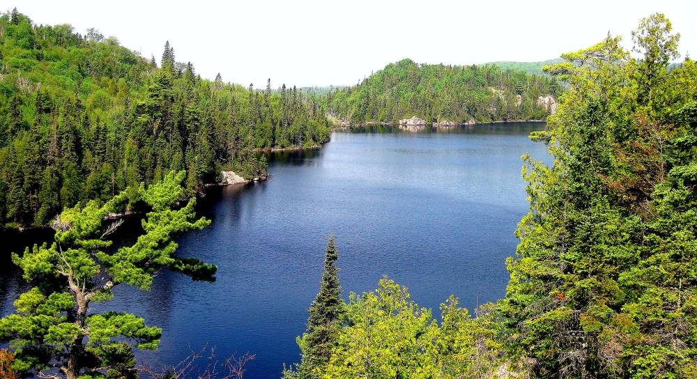 Orphan Lake Lookout